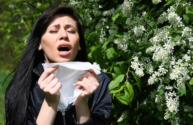 Seasonal Allergies: 4 Ways to Find Relief
