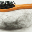 Hair Loss – Not Just a Man's Problem